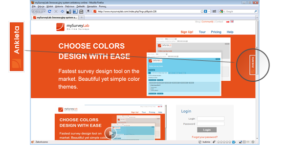 Web survey widget