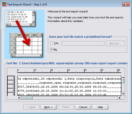 SPSS - CSV import tutorial (step 3)